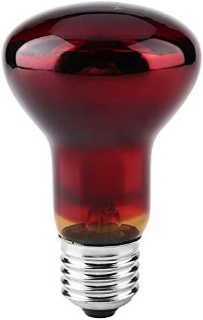 Jadeshay 耐久性に優れた赤外線暖房ウォーム爬虫類ペット供給のためのランプの電球(75W)