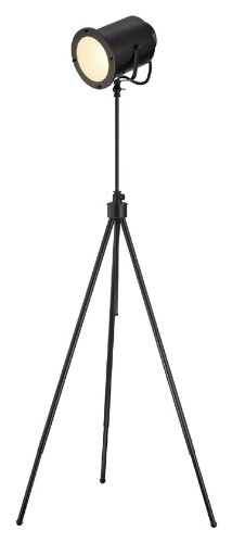 D/BRZ Floor Lamp with Dark Bronze Metal Shades, 24