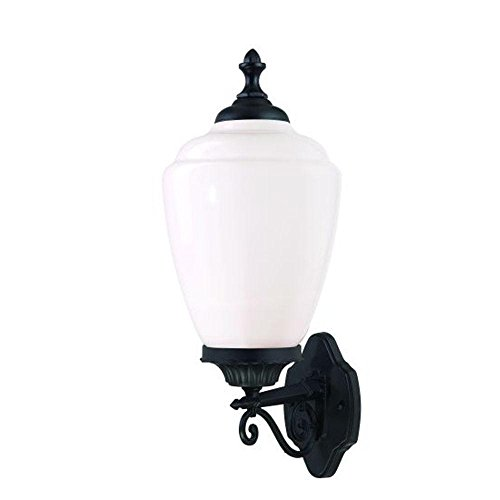Acclaim 5361BK/WH Acorn Collection 1-Light Wall Mount Outdoor Light Fixture, Matte ()