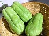 Fresh Chayote (3 Lbs)