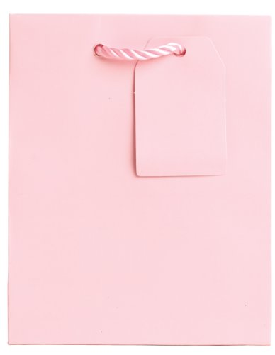 Jillson Roberts Bulk Small Gift Bags Available in 14 Colors, Pastel Pink Matte, 120-Count (BST902) by Jillson Roberts