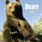 Bears 2010 Wall Calendar
