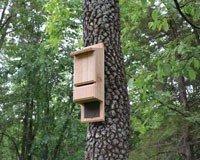 Songbird Essentials Mini Bat Tower ()