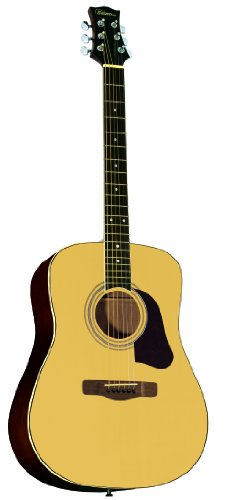 silvertone-inspire-sd2000-n-acoustic-guitar-natural