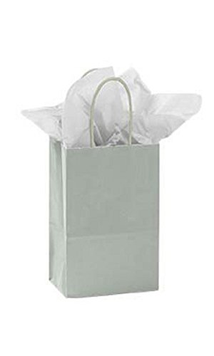 Small Glossy Silver Paper Shopping Bags - Pack of 100 by STORE001