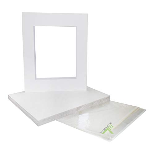 Golden State Art, Pack of 25 White Pre-Cut 16x20 Picture Mat for 11x14 Photo with White Core Bevel Cut Mattes Sets. Includes 25 High Premier Acid Free Mats & 25 Backing Board & 25 Clear Bags