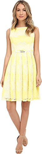 Adrianna Papell Women's Fit-and-Flare Lace Dress