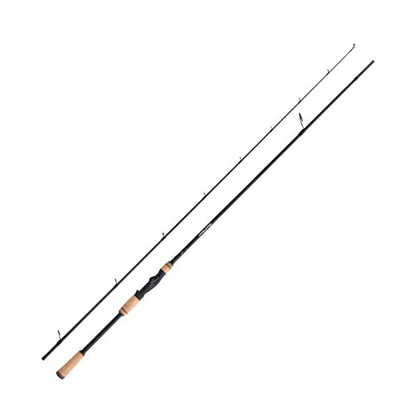 Medium Fast Action Spinning Rod SHIMANO Beastmaster FX