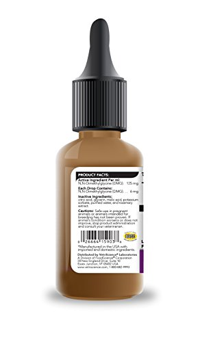 Vetri-DMG-Liquid-1-oz