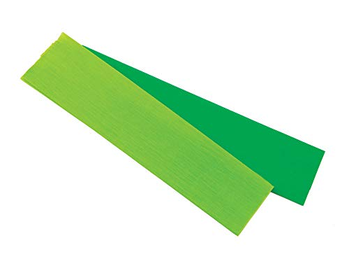 Crepe Paper - Light Green - 10 Sheets - Roar VBS by Group]()