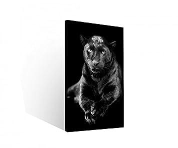 Amazonde Leinwand 1 Tlg Schwarzer Puma Jaguar Panther Tier
