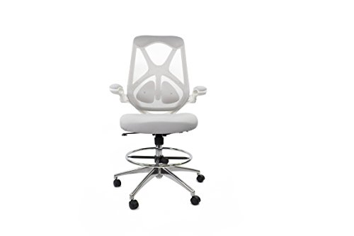 (Frasch High Back Ergonomic Mesh Office Chair by Adjustable Lumbar Support, Memory Foam Molded Seat, Foot Ring, Chrome Base and Flip-up Arms)