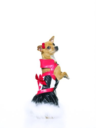 Leg Avenue Queen Of Puppies Incl Collared Dress W/ Marabou Trim 21007(WHITE/RED/BLUE,MEDIUM) Trim Leg Avenue
