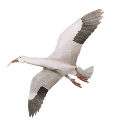 Geese Goose Decoy (Jackite Snow Goose Kite)