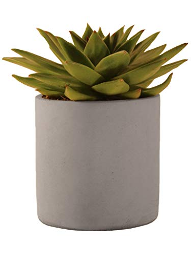 Plant Thread 4-Inch Solid Clay Industrial Succulent Planter Pot with Matte Grey Cement Finish