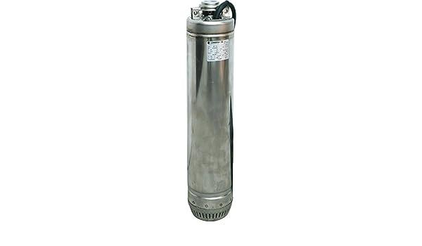 LOWARA Bomba Elettropompa centrifugador Potencia 1.5 HP bañeras y ...