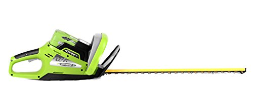 Earthwise LHT14022 22-Inch Blade 40-Volt Cordless Electric Hedge Trimmer, 2Ah Battery & Charger Included by Earthwise