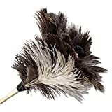- Professional Ostrich Feather Duster, 7'' Handle