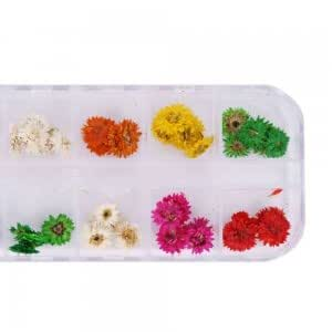 12pcs Real Dried Flower Nail Art Decoration 5