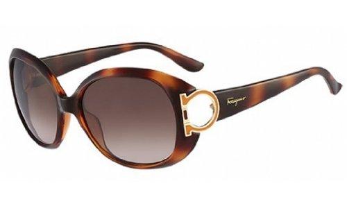 Salvatore Ferragamo Salvatore Ferragamo Women's Sunglasses Sf668s, Brown, - Ferragamo Sunglasses Salvatore Designer