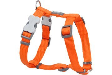 Red Dingo Dog Harness, Small, Orange, My Pet Supplies