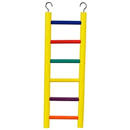 Prevue Pet Products Carpenter Creations 6 Rung 12 in Colored Solid Wood Ladder Prevue-Hendryx
