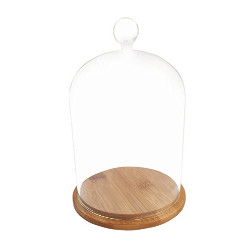 Glass Display Cloche Bell Jar Dome Flower Immortal Preservation Vase Wooden Base(1218cm) (Cabinet Wooden Apothecary)