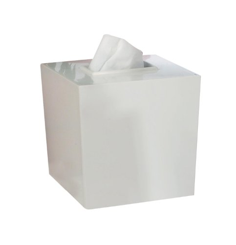 nu steel Elegant Boutique Tissue Box (Resin Boutique Tissue Box)