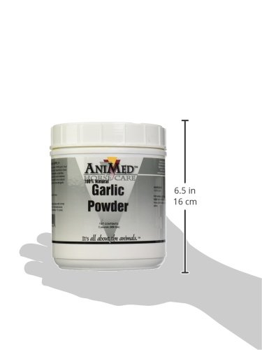 AniMed Garlic Powder Pure for Horses Probiotics