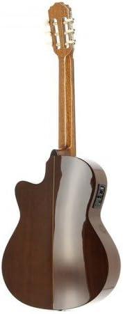 JOSE TORRES JTC-20CE: Amazon.es: Instrumentos musicales