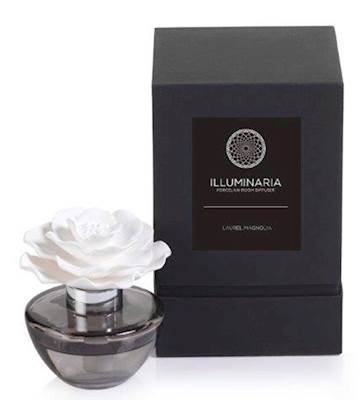 Zodax Illuminaria Porcelain Diffuser, Laurel Magnolia Fragrance