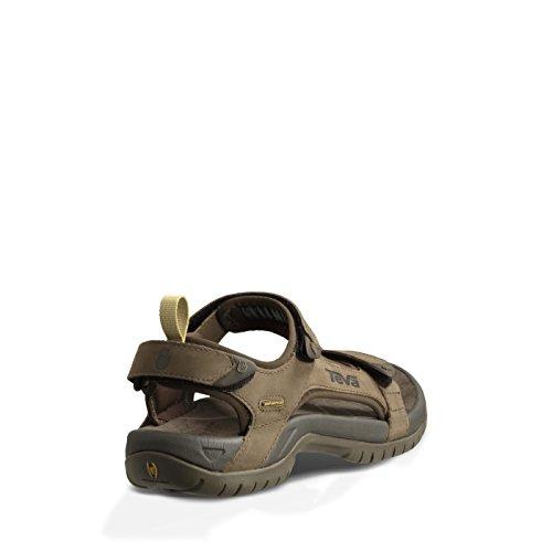 marron Pour Les Plein Sports Homme Marron Sandale Tanza Et Teva Air En Cuir wtq70nFI