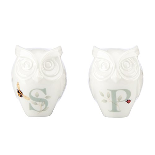 Lenox Butterfly Meadow Figural Owl Salt & Pepper, White (Birds Whimsical Porcelain)