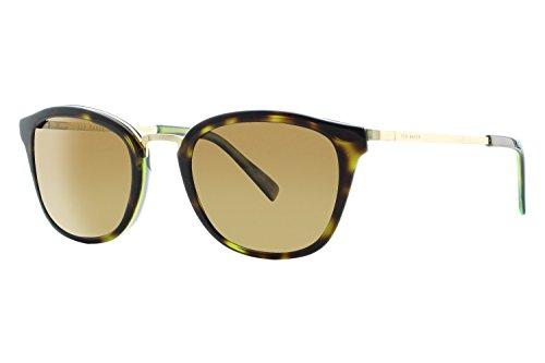 Ted Baker B615 Mens Sunglasses - Tortoise - Ted Sunglasses Baker