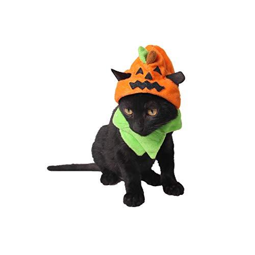Cotowin Wall of Dragon Hot Halloween Pet Supplies Factory Spooky Halloween Dog Hat Halloween Cat Ornaments Trick Or Pumpkin Hat(1pcs) -