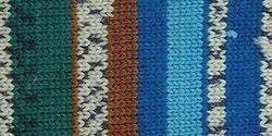 Bulk Buy: Patons Kroy Socks Yarn (6-Pack) Route 66 243455-55711
