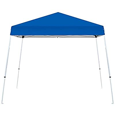 Above All Advertising, Inc. 10 x 10 ft Canopy - Economy Outdoor Pop up Canopy Tent Portable Shade Instant Folding with Roller Bag, Blue: Sports & Outdoors