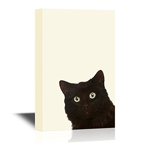 wall26 - Peekaboo Animals Canvas Wall Art - A Black Cat - Gallery Wrap Modern Home Decor | Ready to Hang - 24x36 inches