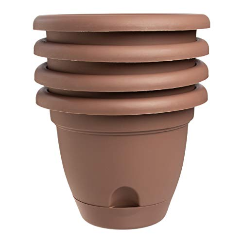Bloem (4 Pack) Lucca Self Watering Planter Pot Plastic Plant Pots Indoor 6 Inch Outdoor Planters with Drainage