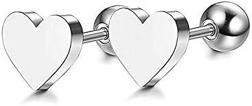 LSBXWL Regalos Pendientes del Corazón del Amor Pendientes Studs Cúbico Mujeres Determinadas Preciosas Stud Pendientes De Chicas Pareja Regalo De Cumpleaños (Metal Color : Silvery)