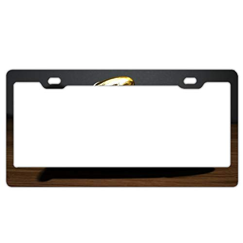 LISPLA License Plate Frames,Artistic Cartridges Alumina Car Licence Plate Covers Slim Design with Bolts Washer Caps for US Standard