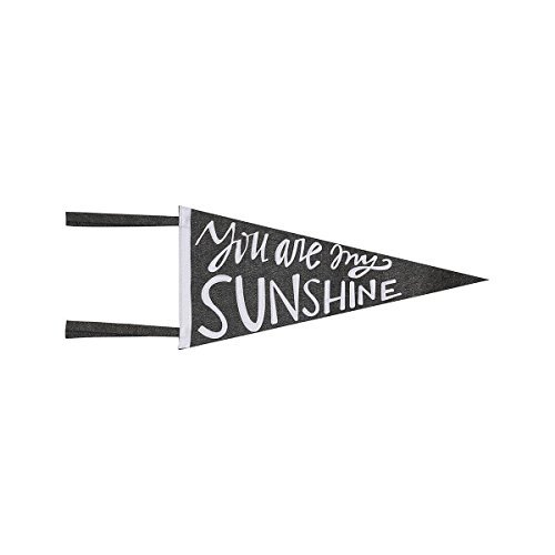You Are My Sunshine Fabric Pennant Banner - Cute Decor or Gift - Christmas Birthday Graduation Nursery Baby Kids Love Grey White (Pennant Grey)