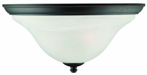 Cheap Design House 514976 Drake 2 Light Ceiling Light, Oil Rubbed Bronze