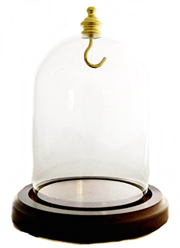 Pocket Watch Glass Display Dome Walnut Base & Yellow (gold) hook - Pocket Watch Display Cases