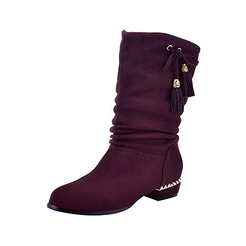 for Shoes,AIMTOPPY Women's Suede Round Head Low Square with Tassel Butterfly Decorative High Boots