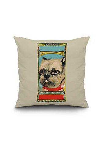 pottery barn bulldog pillow - 8