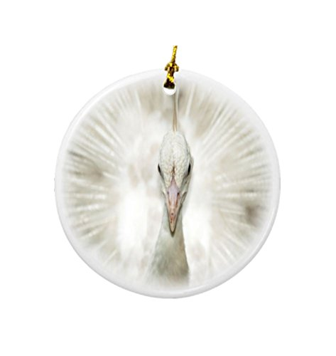 Rikki Knight Albino White Peacock Design Round Porcelain Two-Sided Christmas Ornaments