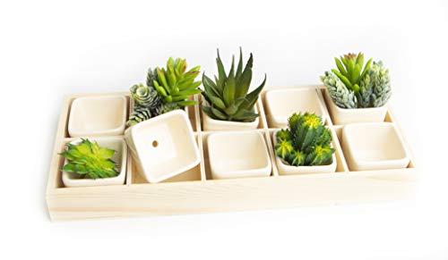 Ceramic Succulent Planter, Set of 10 Succulent Pots in Wooden Indoor Planter