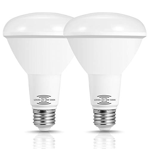 LOHAS BR30 LED Bulbs, Motion Sensor Light Bulb, 150W Equivalent Flood Light BR30 Daylight White 5000K, Security Lighting for Garage Warehouse Porch Stairs, 1750 Lumen, Not Dimmable(2Pack)