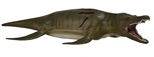 Reptile Life - CollectA Prehistoric Life Pliosaurus Deluxe 1:40 Scale Marine Reptile - Paleontologist Approved Model